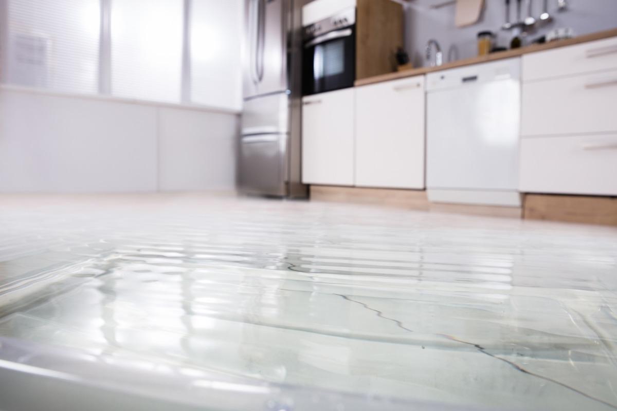Nettoyage d'habitation à Toulouse après inondation par des pro